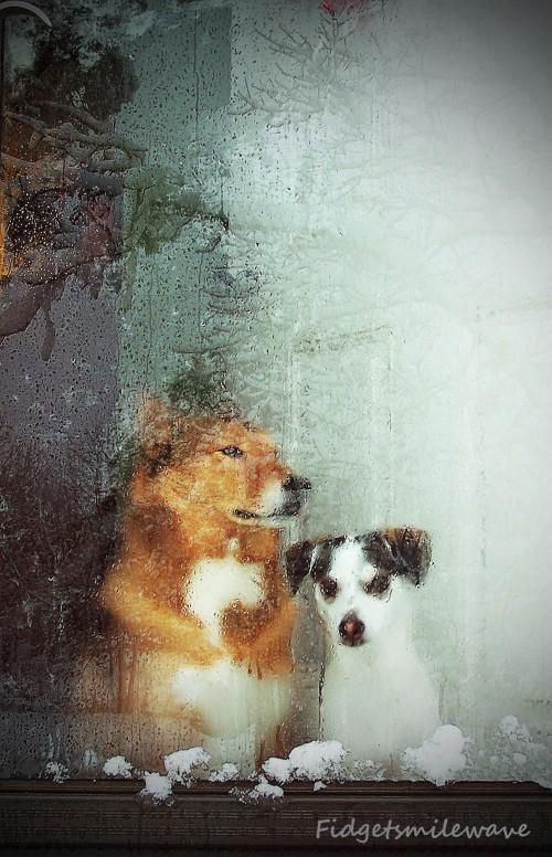 Frankie & Larry