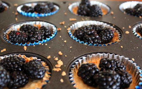 blackberry macaroon tart muffins